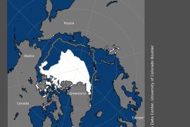 绿色和平:北极海冰范围达到史上第二低值,总体积已消失2/3